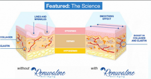 Renuvaline - anti-aging - Forum- Köpa - test