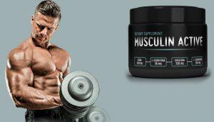 Musculin Active - för att bygga muskelmassa - åtgärd - kräm - nyttigt