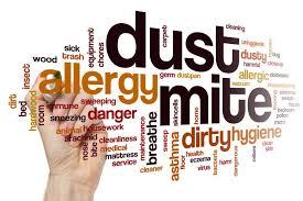 Breathe Clean Bite Mites - bluff - nyttigt - resultat
