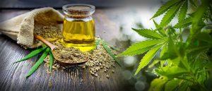 CBD olja – recension – apotek365 – epilepsi – olagligt – beställa – biverkningar – drogtest